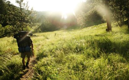 La montagne : notre solution contre la canicule